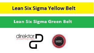 Certificación Lean Six Sigma Yellow + Green Belt